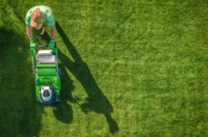 lawn mowing Adelaide